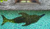 """Bottlenose Dolphin"" by Andrew MacNaughton"