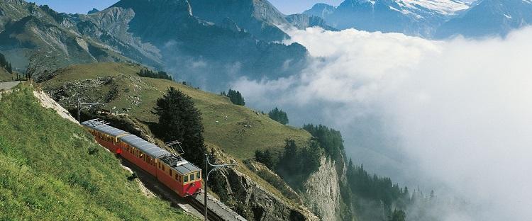 Swiss-Bernese
