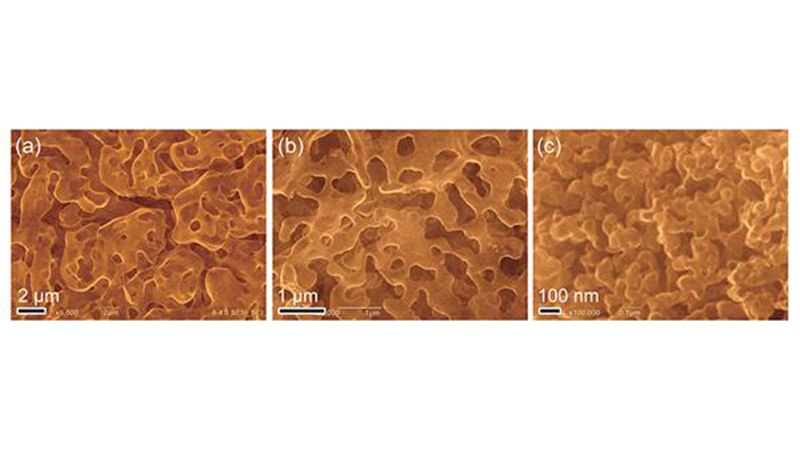 3D curved graphene at different scales (Credit: Tohoku University)