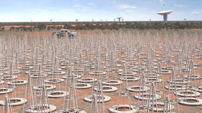 Artist's impression of what the SKA antennas in Australia will look like (Credit: SKA Organisation)