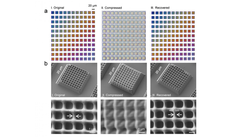 In (a), the printed object's colour is clearly visible before it is compressed. After recovery, the colours are visible again. (b) shows the micron-scale object before, during and after compression (Credit: SUTD)