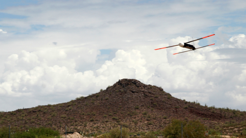 The Coyote drone (Credit: Raytheon)