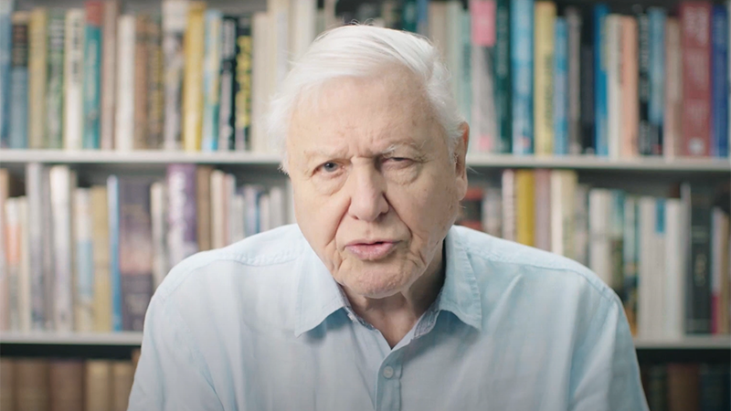 Sir David Attenborough has backed new plastic recycling technology as a solution to waste plastic entering the ocean (Credit for YouTube screenshot: Mura Technology)