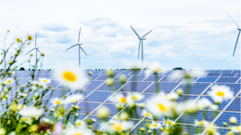 Wind played the leading role in the UK's record year for renewables (Credit: Shutterstock)