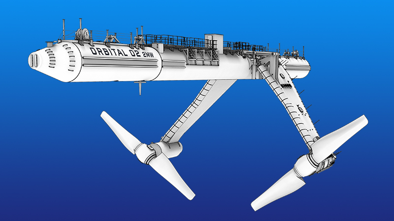 FEATURE: UK missing opportunity as it swims against tidal energy