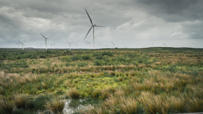 UK onshore wind boom set for mid-2020s as 'pipeline' grows  Image